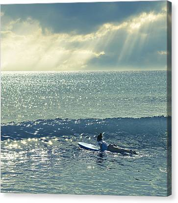 First Of The Day Canvas Print by Laura Fasulo