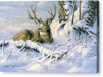 First Snow Canvas Print by Kathleen  V  Butts