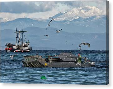 Canvas Print featuring the photograph Fish Are Flying by Randy Hall