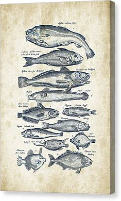Saltwater Fishing Canvas Print - Fish Species Historiae Naturalis 08 - 1657 - 01 by Aged Pixel