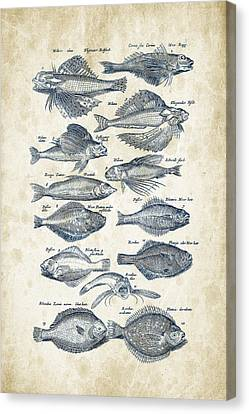 Saltwater Fishing Canvas Print - Fish Species Historiae Naturalis 08 - 1657 - 22 by Aged Pixel