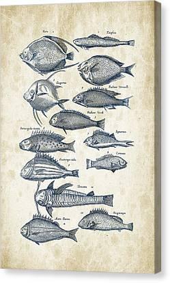 Fish Species Historiae Naturalis 08 - 1657 - 32 Canvas Print