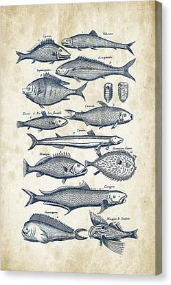 Fish Species Historiae Naturalis 08 - 1657 - 33 Canvas Print
