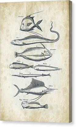 Fish Species Historiae Naturalis 08 - 1657 - 37 Canvas Print by Aged Pixel