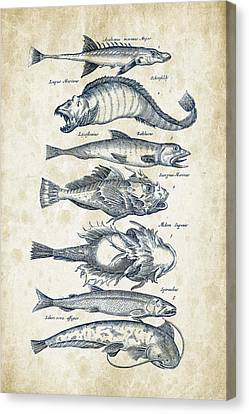Saltwater Fishing Canvas Print - Fish Species Historiae Naturalis 08 - 1657 - 46 by Aged Pixel