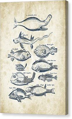 Fish Species Historiae Naturalis 08 - 1657 - 44 Canvas Print by Aged Pixel
