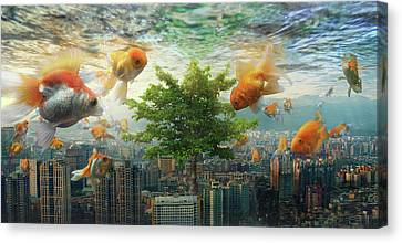 Fish Tank Canvas Print by Andrew Kow