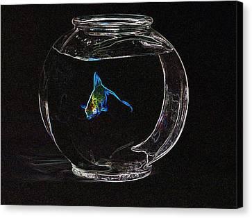 Fishbowl Canvas Print by Tim Allen