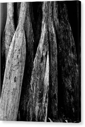 Fisherman Cove Oars Canvas Print by Michael L Kimble