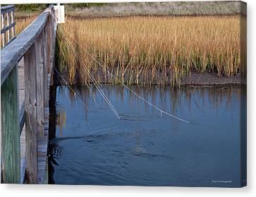 Fishin' Lines Canvas Print by Kay Lovingood