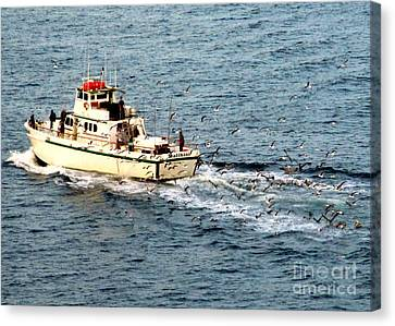 Canvas Print featuring the photograph Fishing And Seagulls by Randall Weidner