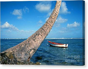 Fishing Boat And Palm Trunk Canvas Print by Thomas R Fletcher