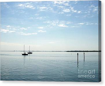 Fishing Buddies Canvas Print by Gail Kent