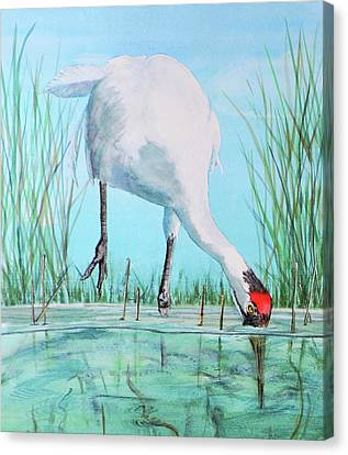 Fishing For Food Canvas Print by Vicky Lilla