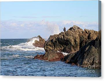 Canvas Print featuring the photograph Fishing by Linda Lees