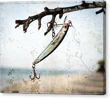 Fish Canvas Print - Fishing Lure Art - Caught - Sharon Cummings by Sharon Cummings