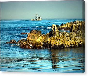 Fishing Monterey Bay Ca Canvas Print