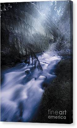 Fitzgerald Rock Pool Canvas Print by Jorgo Photography - Wall Art Gallery