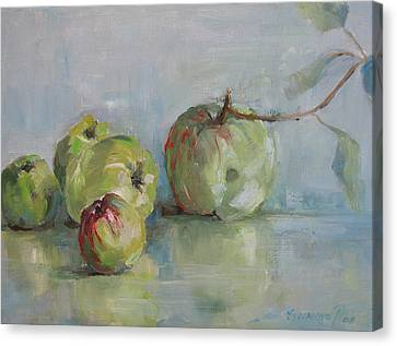 Five Apples Canvas Print by Synnove Pettersen