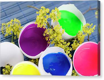 Five Egg Shells Filled With Paints For Easter Decoration Canvas Print by Dariya Angelova
