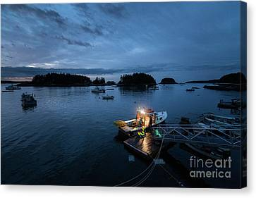 Five Islands Blue Hour Canvas Print by Benjamin Williamson