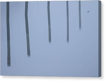 Canvas Print featuring the photograph Five Poles And A Duck by Karol Livote
