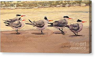 Five Terns Canvas Print