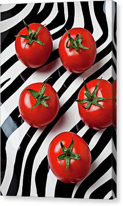 Five Tomatoes  Canvas Print by Garry Gay