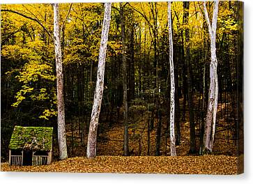 Fixer Upper Canvas Print by Glenn DiPaola