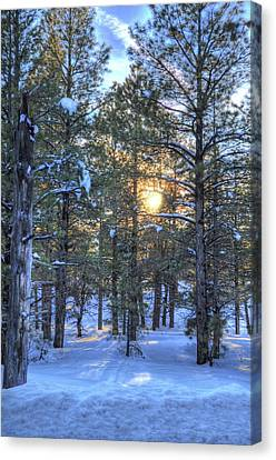 Flagstaff Sunset Canvas Print by Kelly Wade