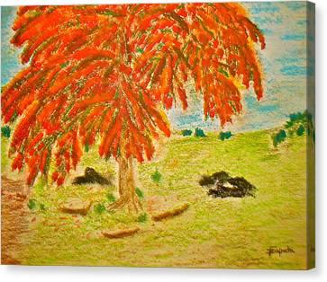 Flamboyan-tropical Splendor Canvas Print by Felix Zapata