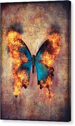 Combusting Canvas Print - Flaming Blue Butterfly by Garry Gay