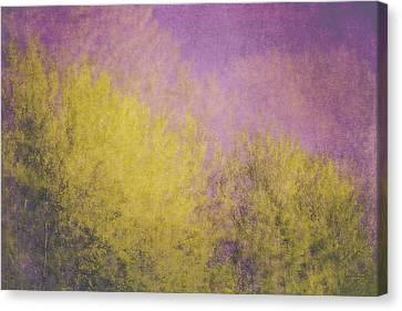Canvas Print featuring the photograph Flaming Foliage 3 by Ari Salmela