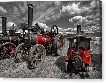 Flaming Red Canvas Print by Nichola Denny