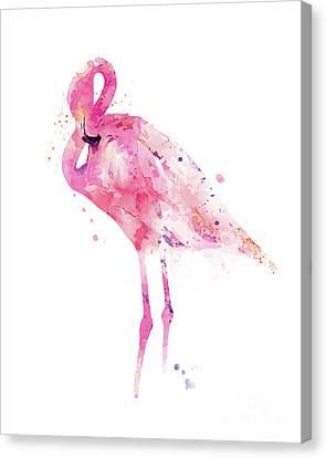 Flamingo Canvas Print by Monn Print