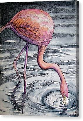 Flamingo Fishing  II Canvas Print