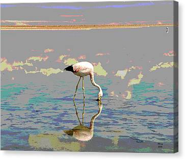 Flamingo In The Sunset Canvas Print by Charles Shoup