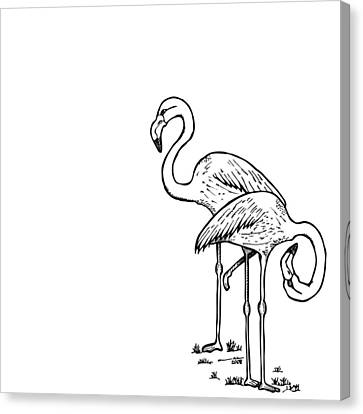 Flamingo Canvas Print - Flamingoes - Black And White by Karl Addison