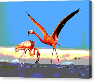 Flamingos Canvas Print by Charles Shoup