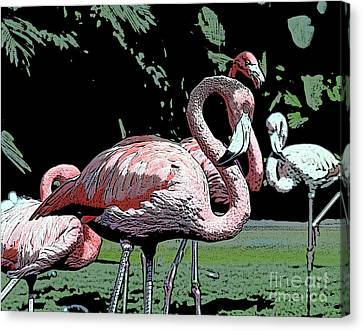 Canvas Print featuring the photograph Flamingos I by Jim and Emily Bush