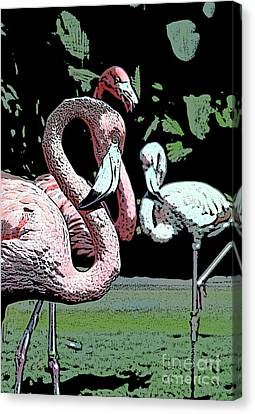 Canvas Print featuring the photograph Flamingos II by Jim and Emily Bush