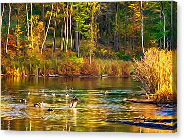 Canadian Marsh Canvas Print - Flapping For Fall - Paint by Steve Harrington