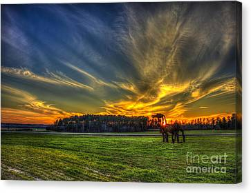 Flash The Iron Horse Sunset Canvas Print by Reid Callaway
