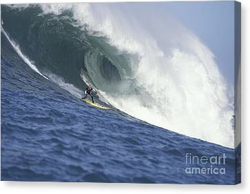 Flea On A Mavericks Giant Canvas Print by Stan and Anne Foster