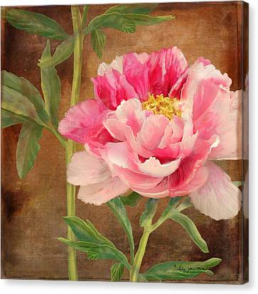 Fleeting Glory - Peony 3 Canvas Print by Audrey Jeanne Roberts