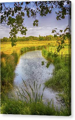 Lush Colors Canvas Print - Flemish Creek by Wim Lanclus