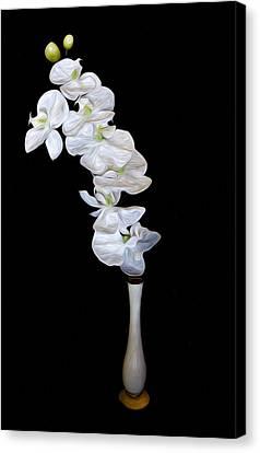 Fleur Blanche Canvas Print by Cecil Fuselier