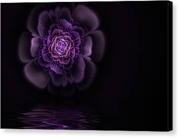Fleur Canvas Print by John Edwards
