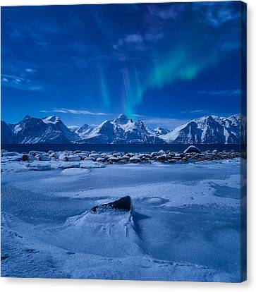 Flicker Canvas Print by Tor-Ivar Naess