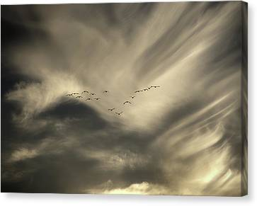 Canvas Print featuring the photograph Flight 016 Westbound by Robert Geary